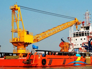 Offshore Pedestal Transporter Crane Use For Fixed Point Transport
