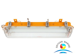 CFY21 Series Explosion-proof Fluorescent Light